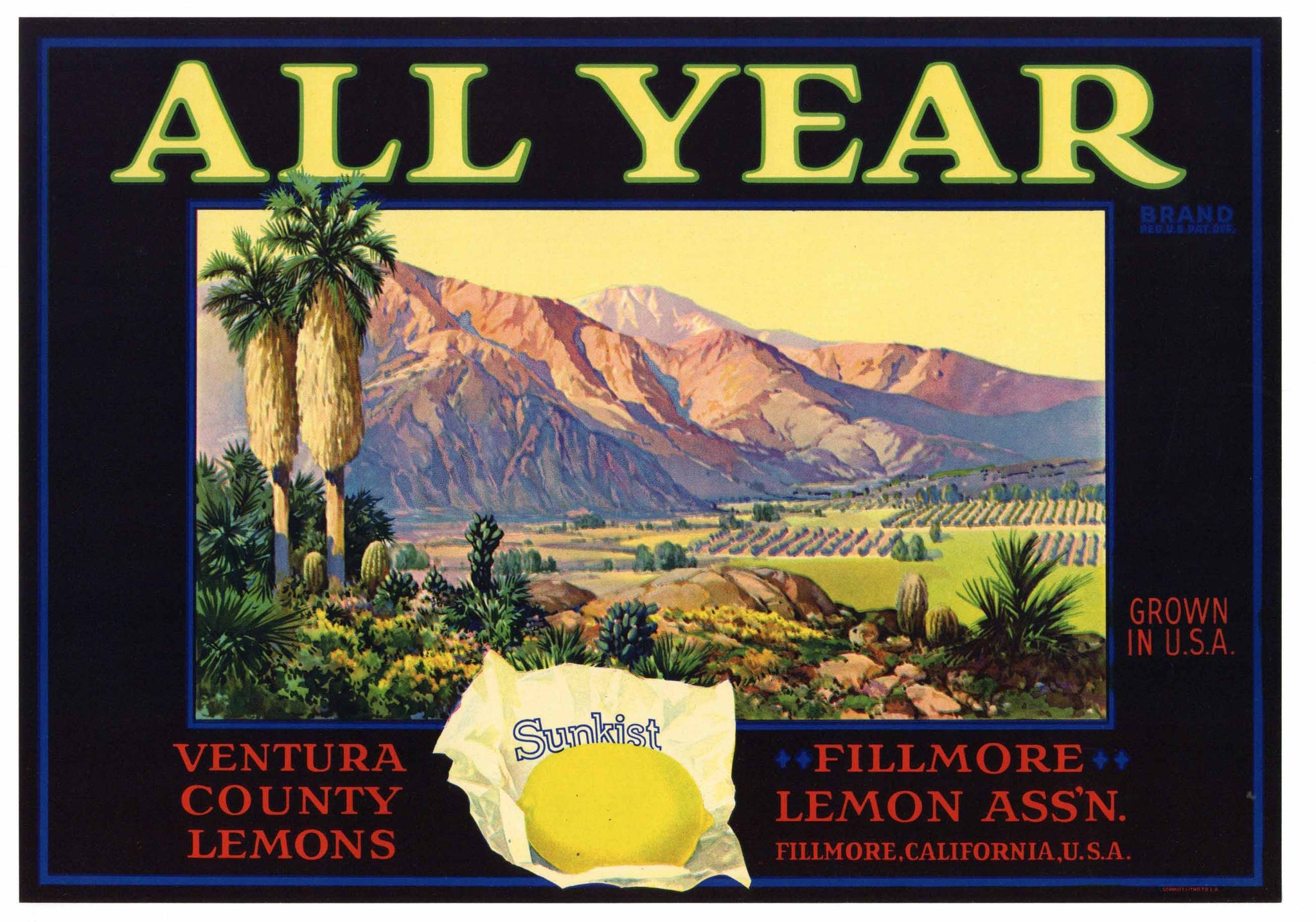 ALL YEAR Brand Vintage Lemon Crate Label (L203)
