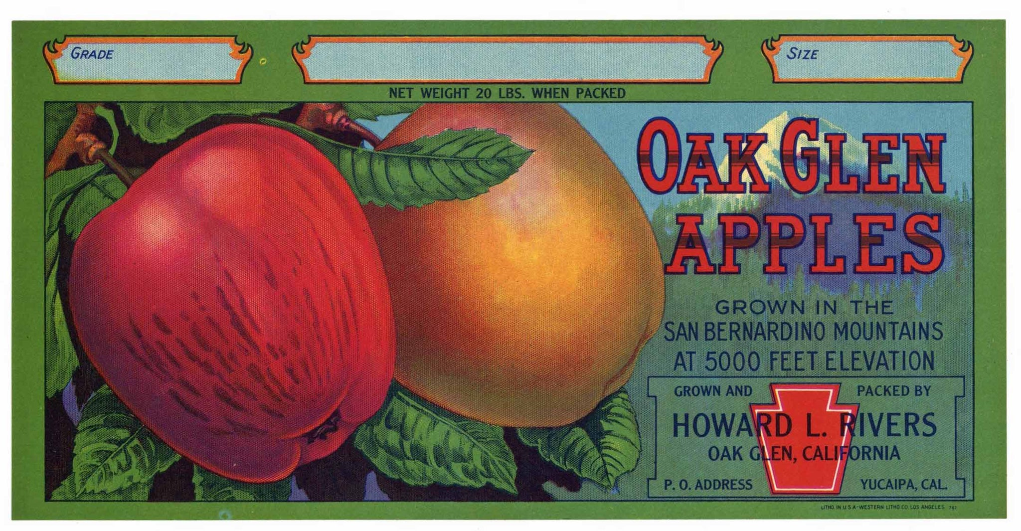 Oak Glen Apples Brand Vintage San Bernardino Apple Crate Label, s