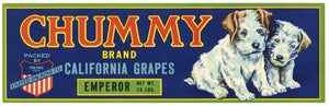 CHUMMY Brand Vintage Grape Crate Label (LL1067)
