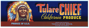 Tulare Chief Brand Vintage Produce Crate Label