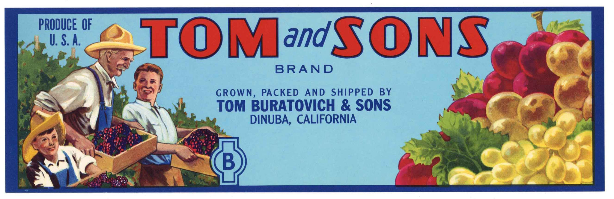Tom And Sons Brand Vintage Dinuba Grape Crate Label