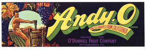 Andy-O Brand Vintage Grape Crate Label