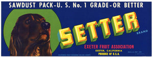 Setter Brand Vintage Exeter Fruit Crate Label, Sawdust Pack, Dog