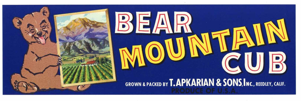 Bear Mountain Cub Brand Vintage Fruit Crate Label