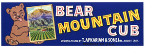 BEAR MOUNTAIN CUB Brand Vintage Fruit Crate Label (LL137)