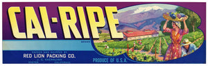 Cal Ripe Brand Vintage Exeter Grape Crate Label