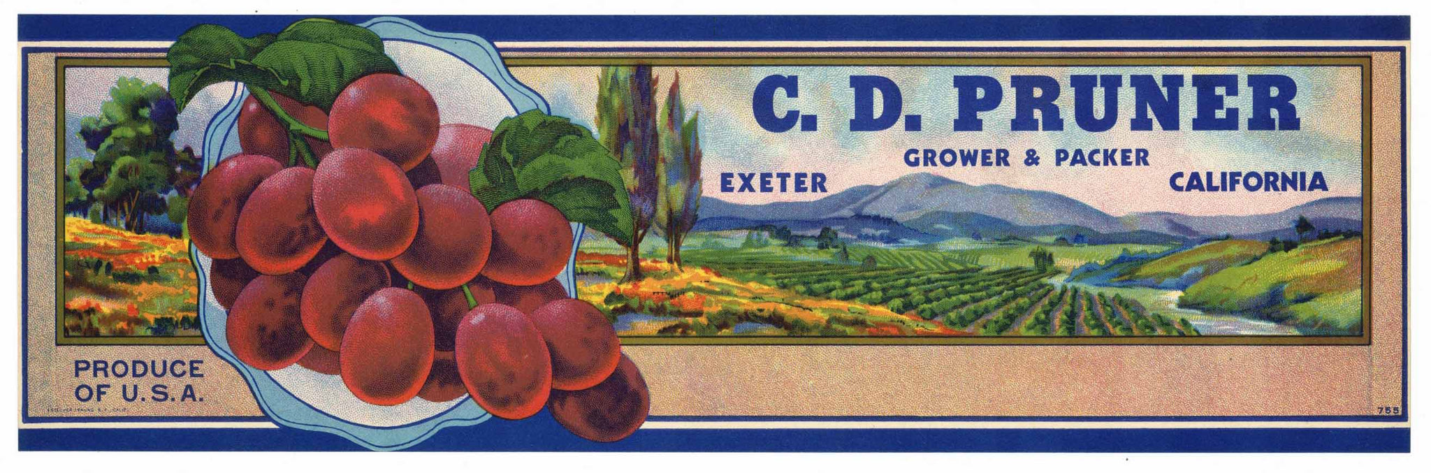 C. D. Pruner Brand Vintage Exeter Grape Crate Label