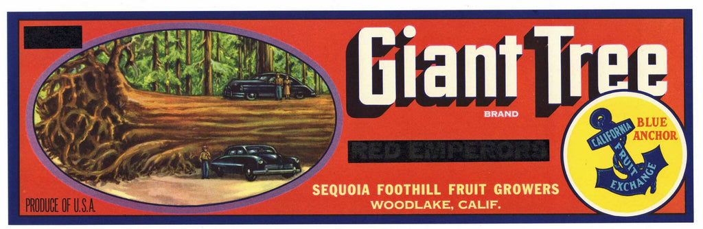 Giant Tree Brand Vintage Woodlake Grape Crate Label