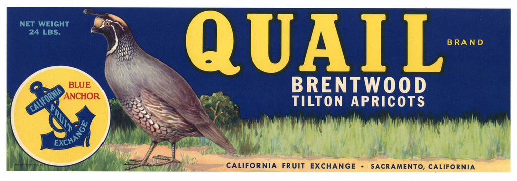 Quail Brand Vintage Brentwood California Fruit Crate Label