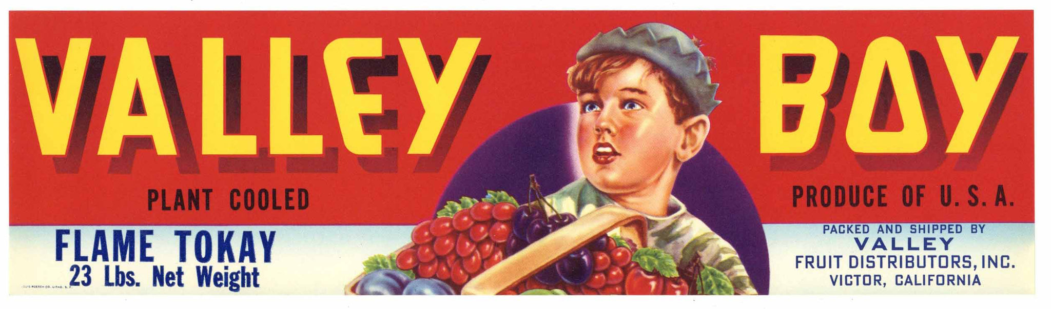 Valley Boy Brand Vintage Victor Grape Crate Label