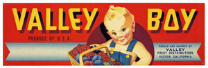 Valley Boy Brand Vintage Victor Fruit Crate Label