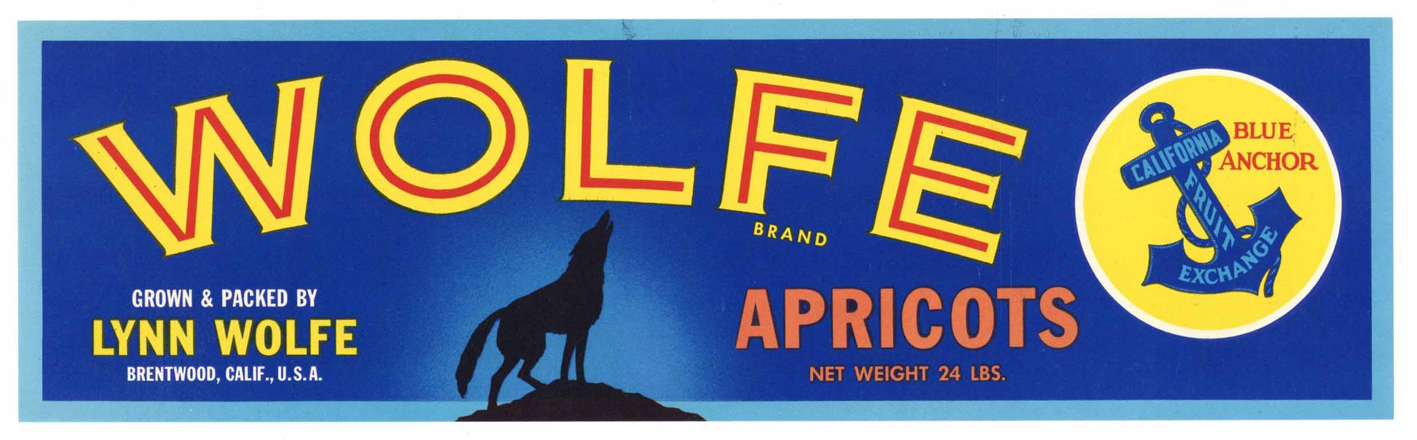 Wolfe Brand Vintage Brentwood Apricot Fruit Crate Label