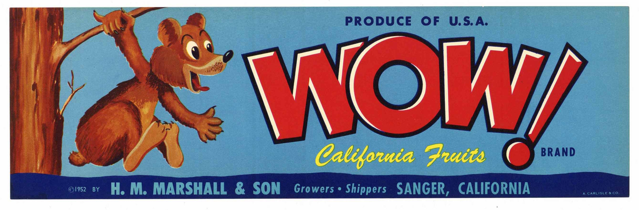 WOW!  Brand Vintage Sanger Produce Crate Label