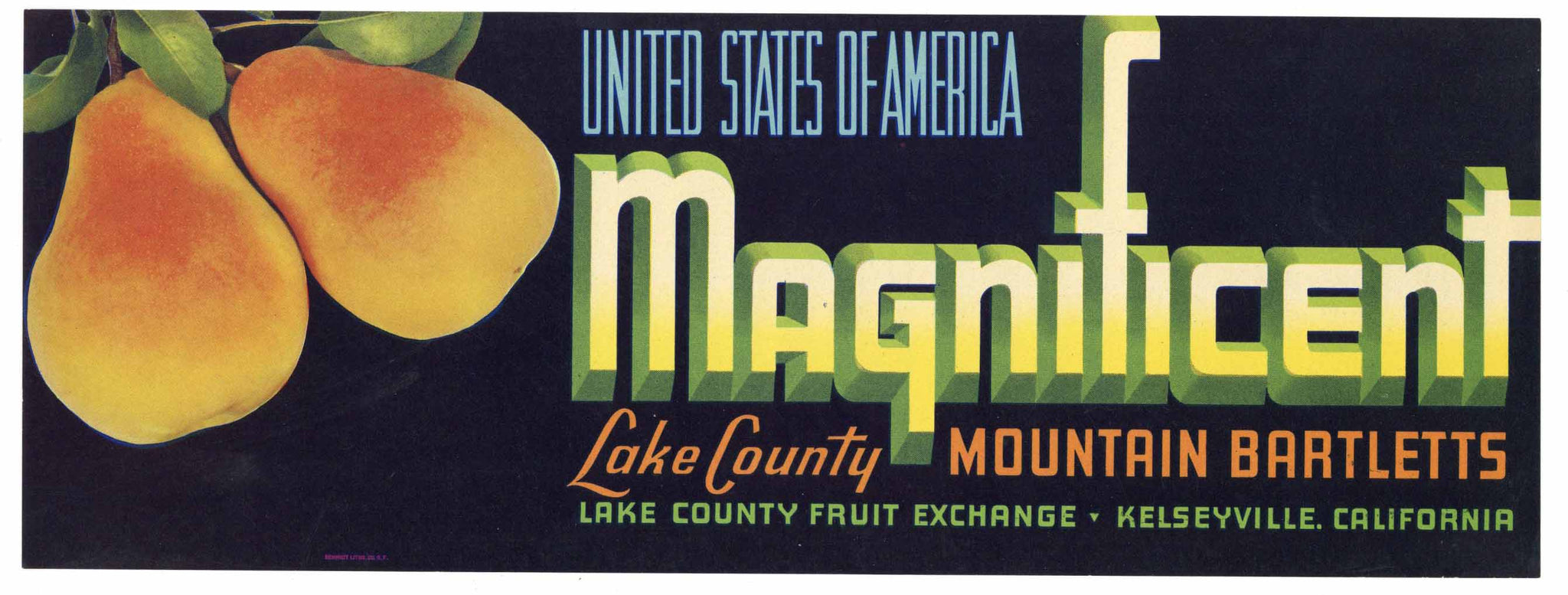 Magnificent Brand Vintage Kelseyville Lake County Pear Crate Label