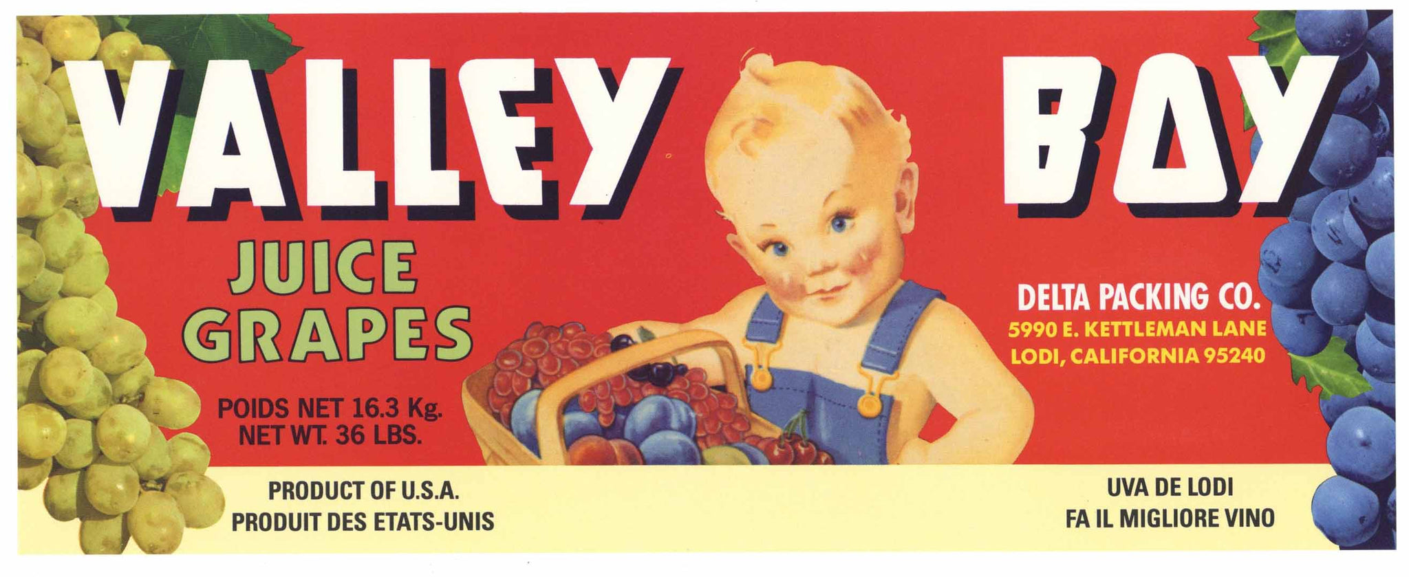 Valley Boy Brand Vintage Lodi Wine Grape Crate Label