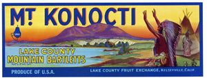 Mt. Konocti Brand Vintage Lake County Pear Crate Label, lug