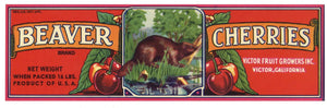 BEAVER Brand Vintage Cherry Crate Label r (LS012)