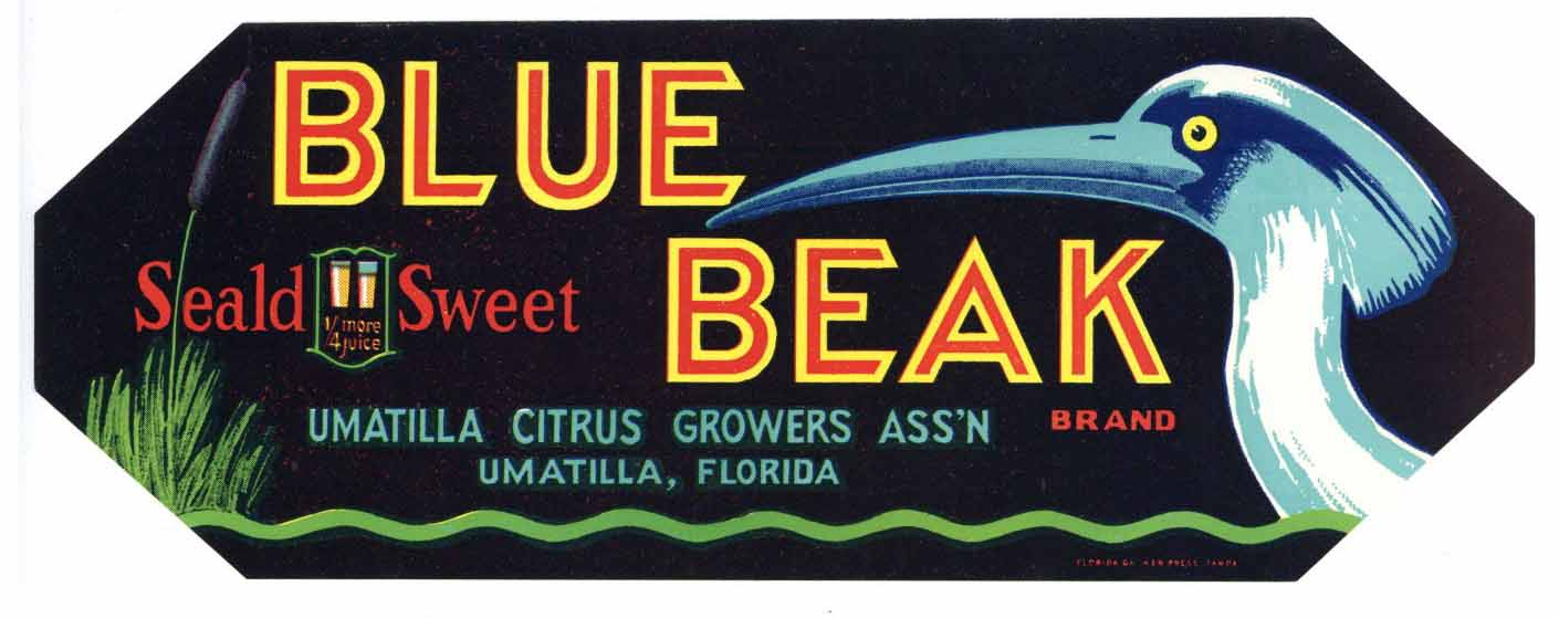 Blue Beak Brand Vintage Umatilla Florida Citrus Crate Label