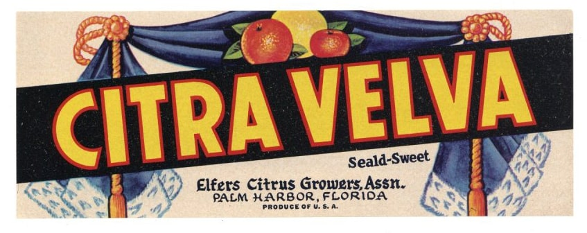 Citra Velva Brand Vintage Palm Harbor Florida Citrus Crate Label