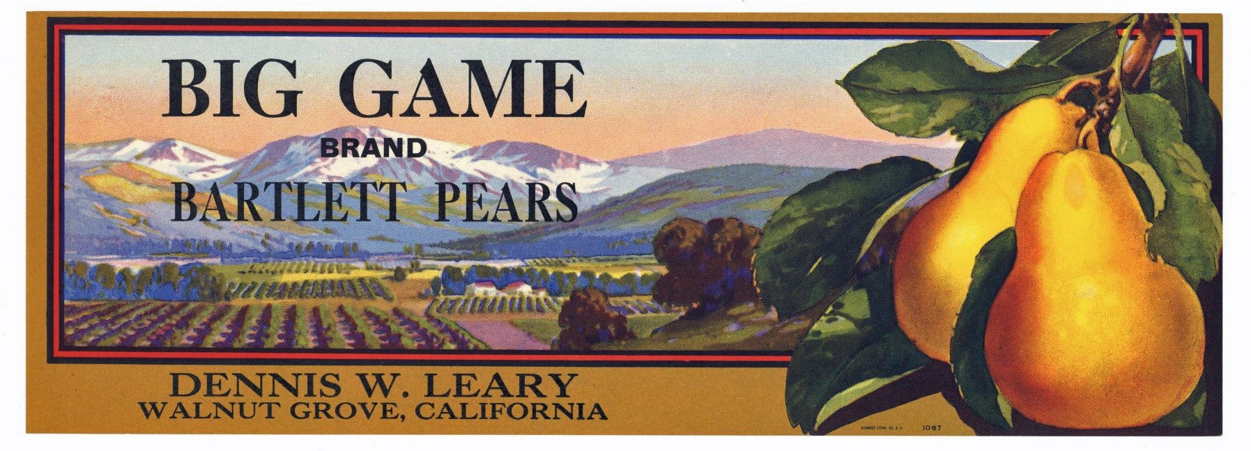 BIG GAME Brand Vintage Pear Crate Label L (LS479)