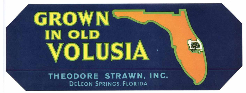 Grown In Old Volusia Brand Vintage Florida Citrus Crate Label
