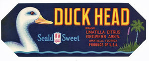 Duck Head Brand Vintage Umatilla Florida Citrus Crate Label, h