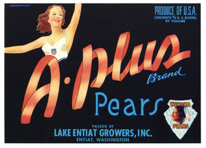 A-PLUS Brand Vintage Pear Crate Label, (P011)