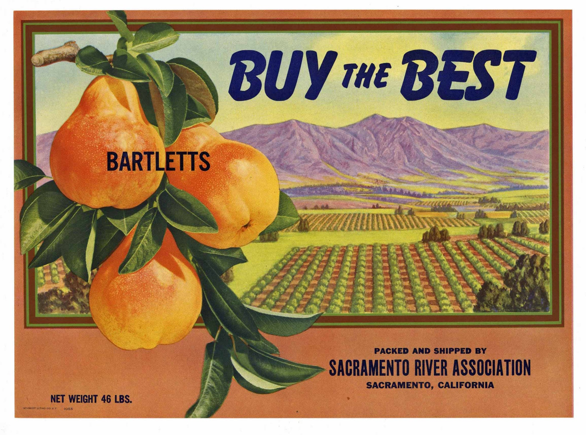 Buy The Best Brand Vintage Sacramento River Pear Crate Label