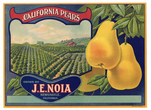 California Pears Brand Vintage Placer County Pear Crate Label