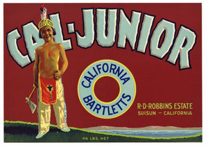 Cal-Junior Brand Vintage Suisun Pear Crate Label