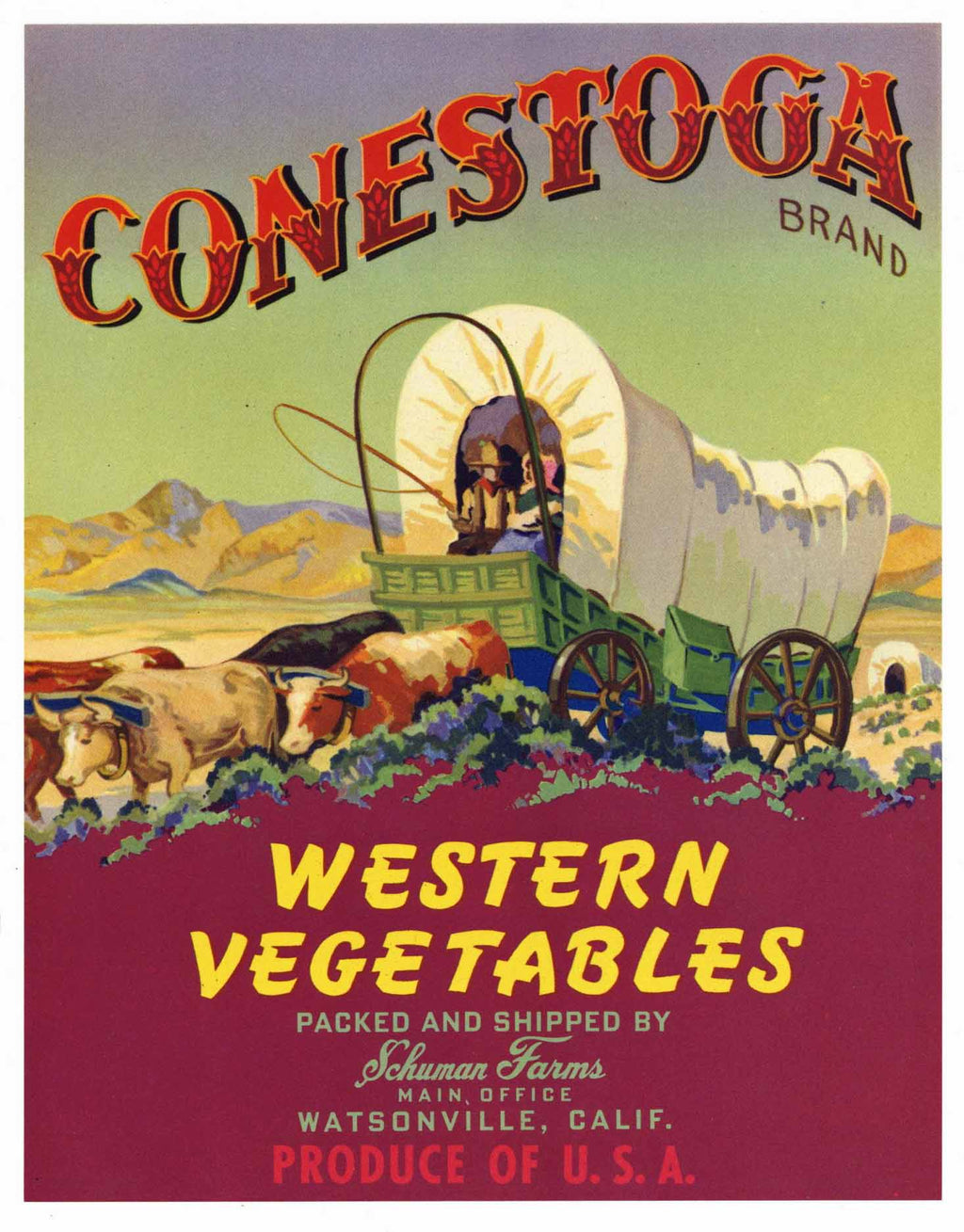 Conestoga Brand Vintage Watsonville Vegetable Crate Label