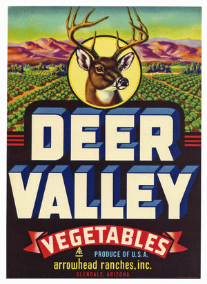 Deer Valley Brand Vintage Arizona Vegetable Crate Label, L