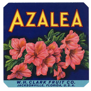 AZALEA Brand Vintage Florida Citrus Crate Label, 7x7 (VS001)