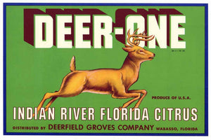 Deer-One Brand Vintage Wabasso Florida Citrus Crate Label