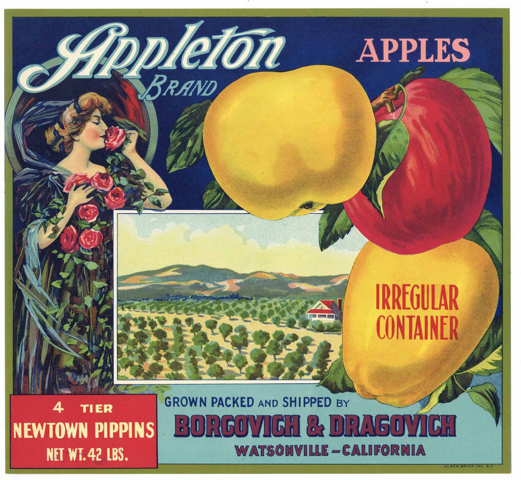 Appleton Brand Vintage Watsonville Apple Crate Label, op