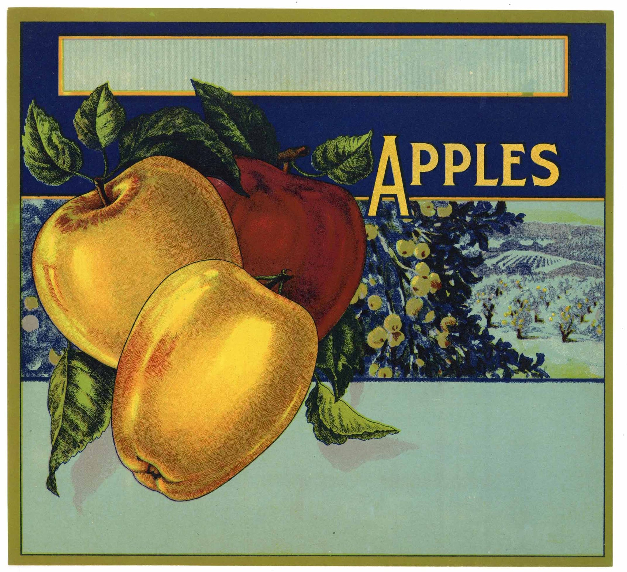 Apples Vintage Stock Apple Crate Label