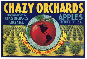Chazy Orchards Brand Vintage New York Apple Crate Label