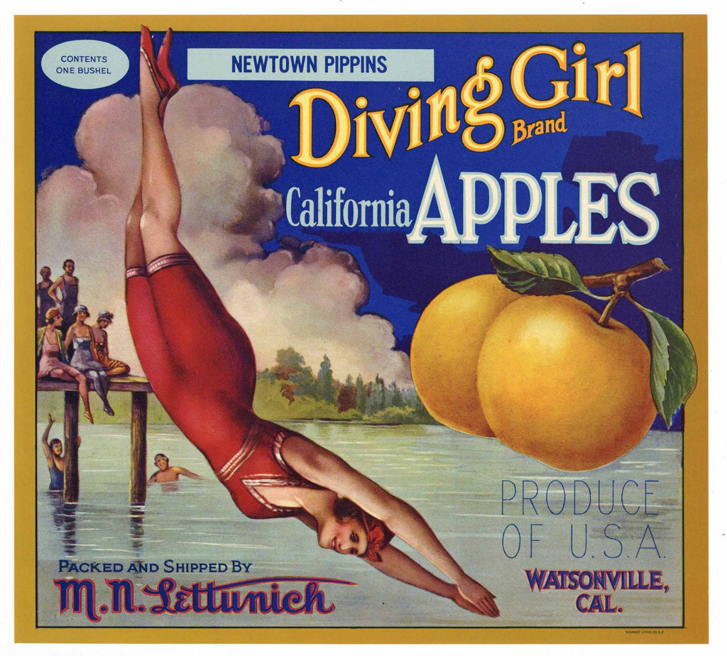 Diving Girl Brand Vintage Watsonville Apple Crate Label MNL