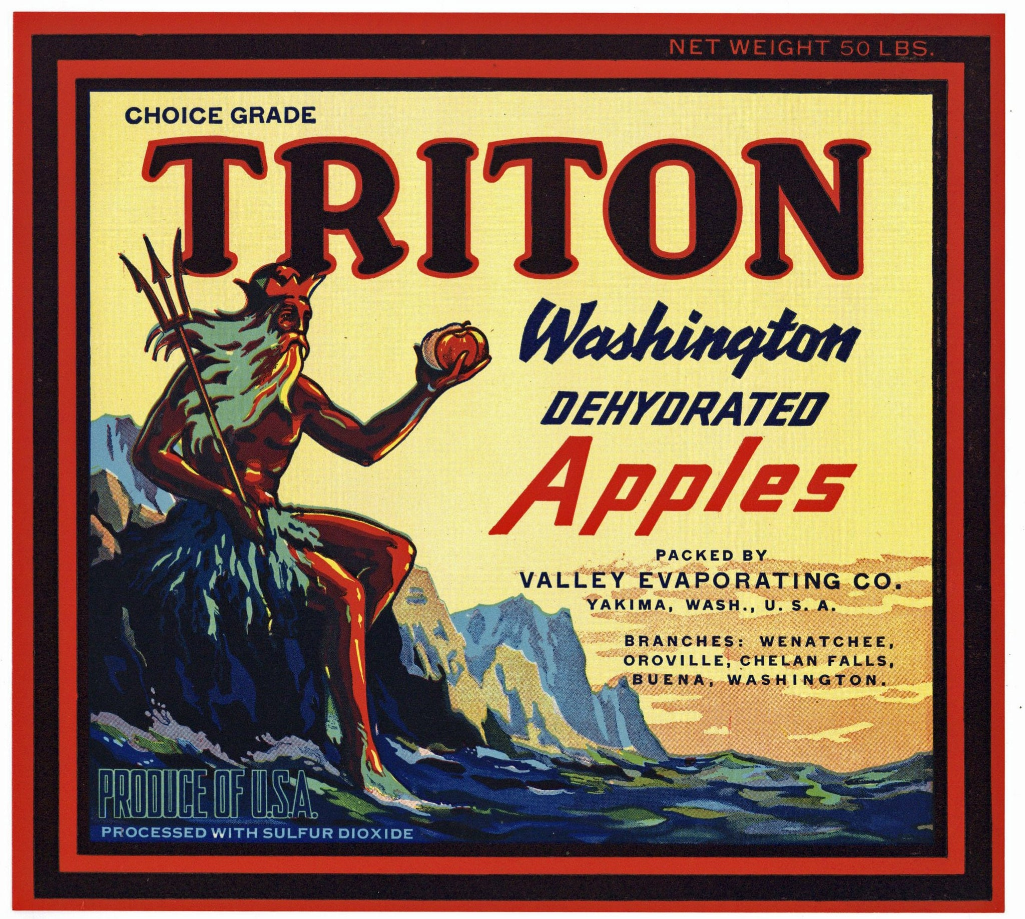 Triton Brand Vintage Washington Apple Crate Label