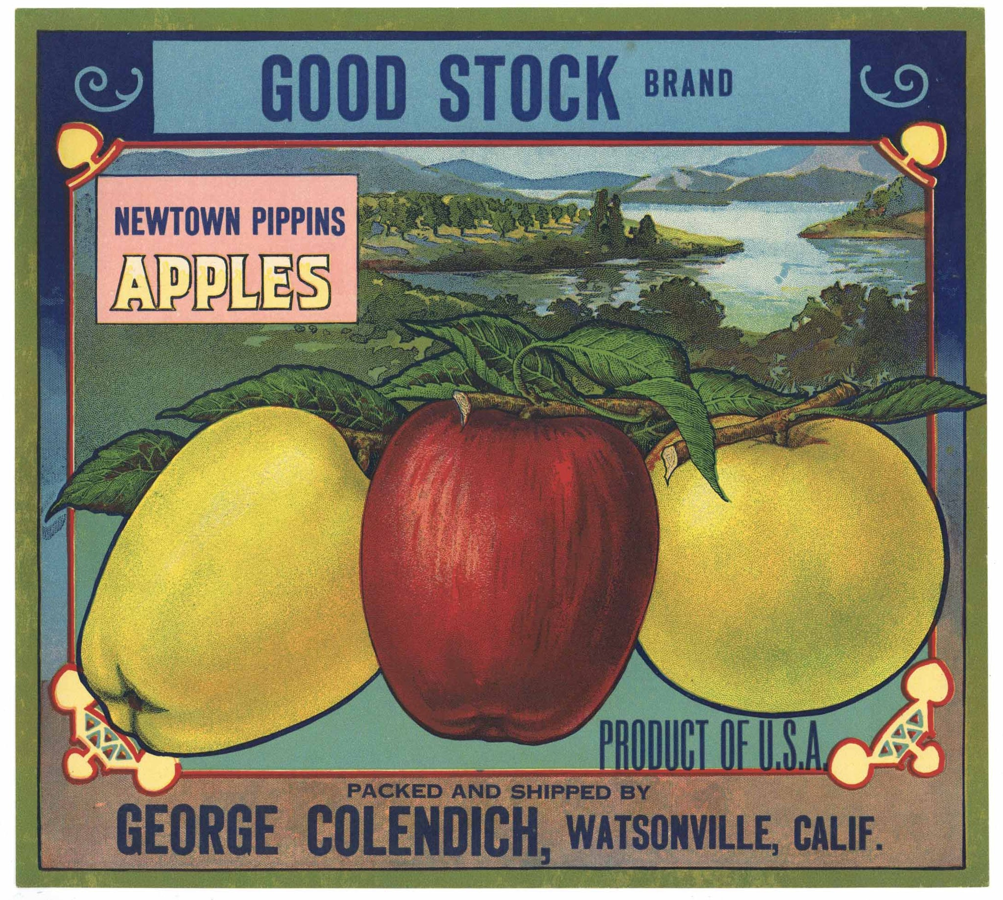 Good Stock Brand Vintage Watsonville Apple Crate Label