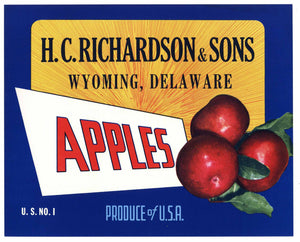 H. C. Richardson & Sons Brand Vintage Wyoming Delaware Apple Crate Label