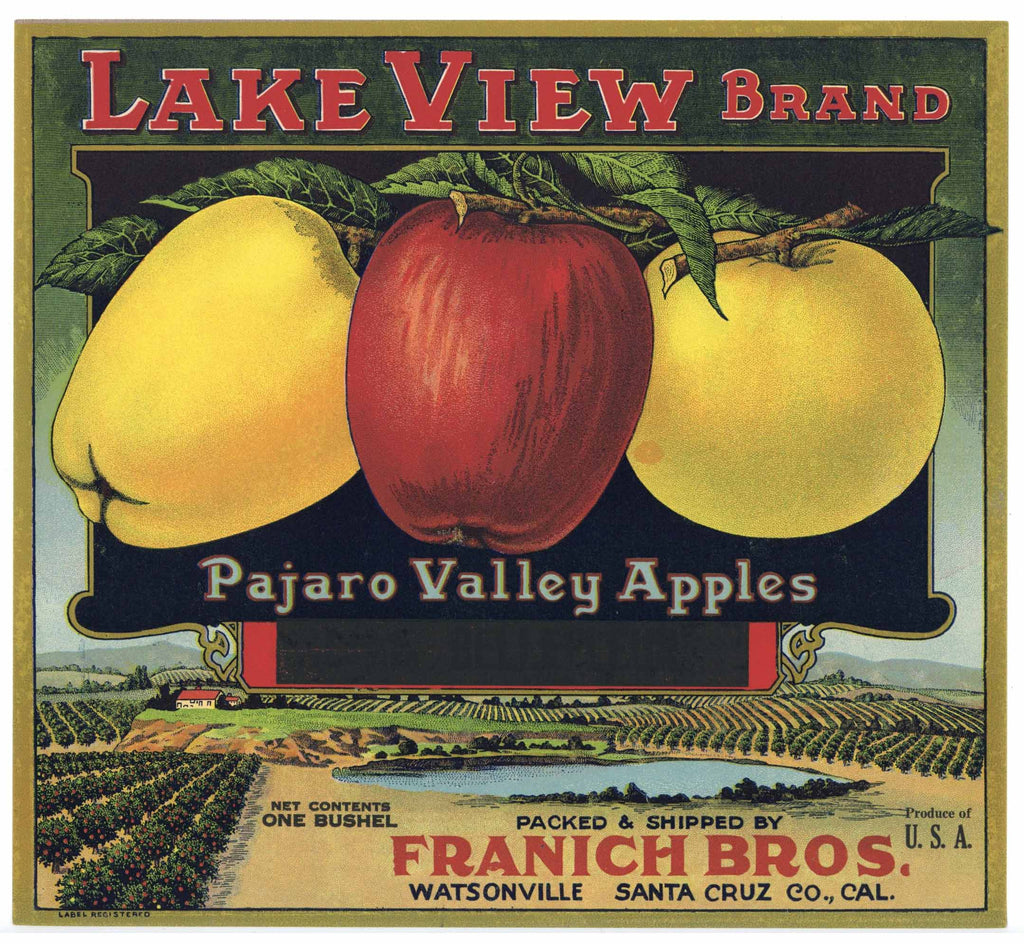 LAKE VIEW Brand Vintage Watsonville Apple Crate Label, Franich