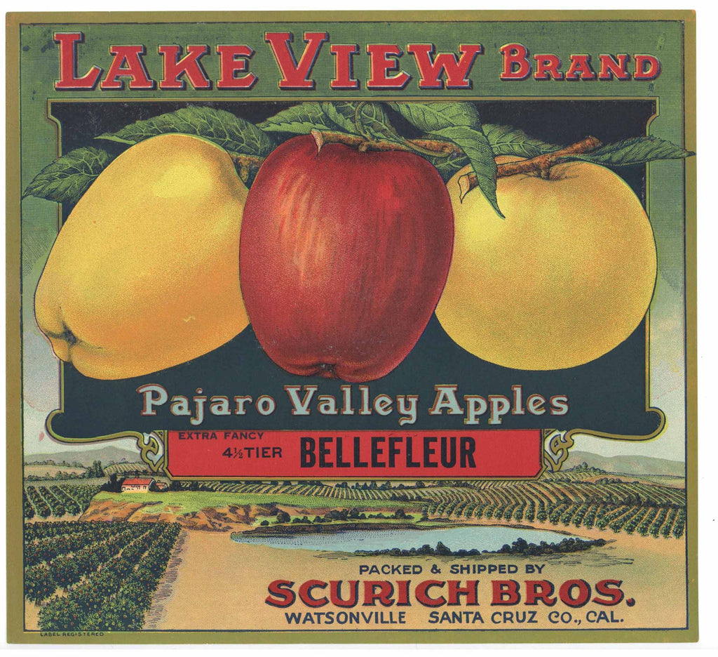 Lake View Brand Vintage Watsonville Apple Crate Label, Scurich