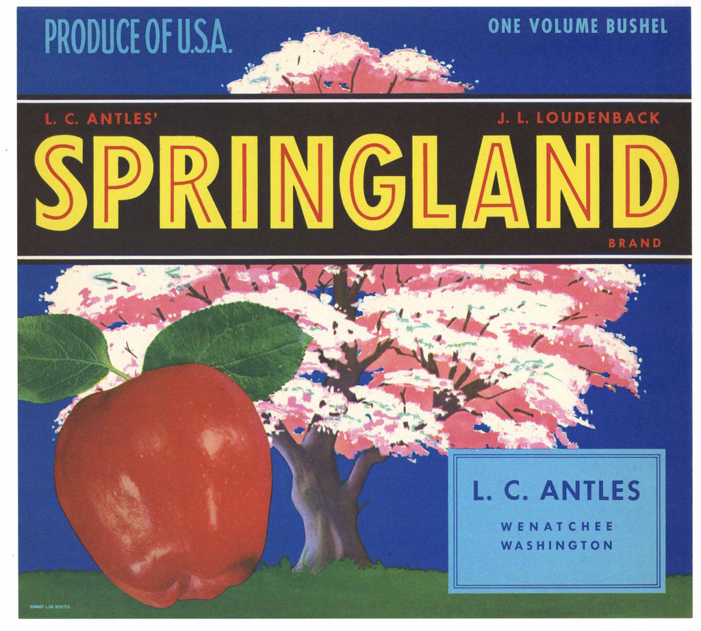 Springland Brand Vintage Wenatchee Washington Apple Crate Label