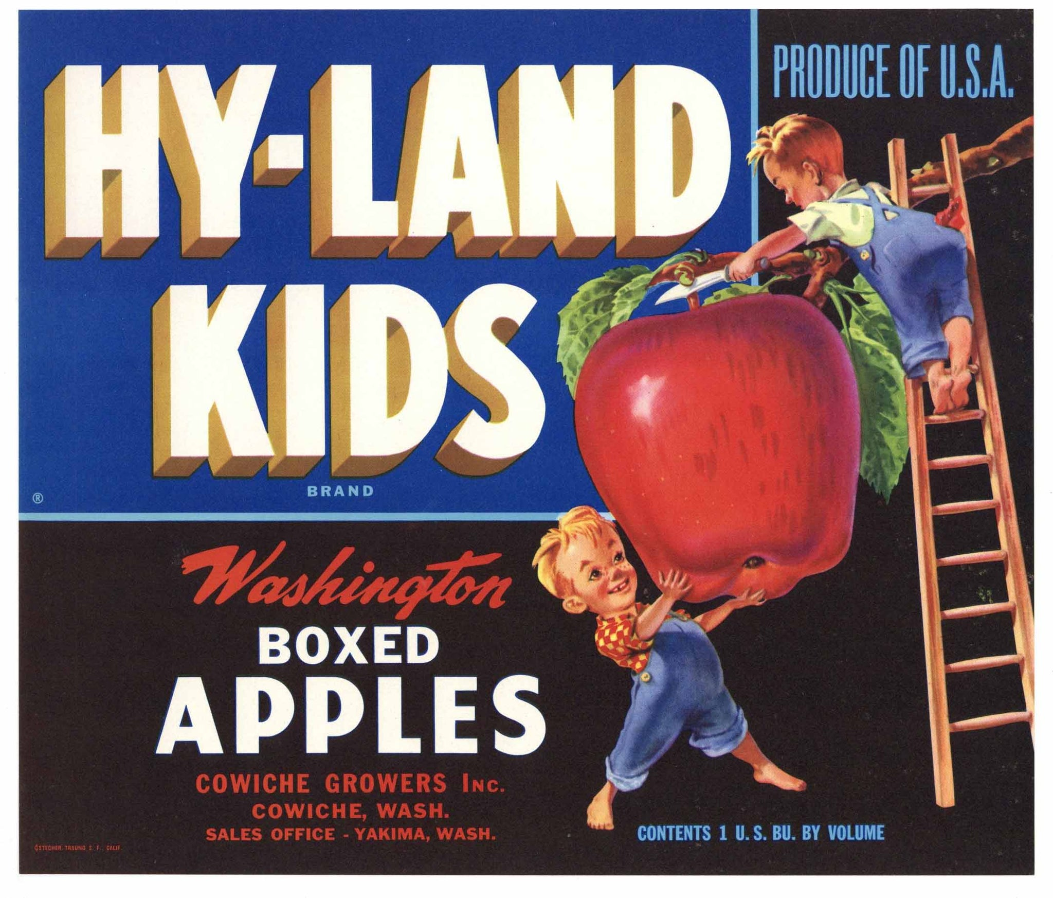 Hy Land Kids Brand Vintage Cowiche Washington Apple Crate Label, blue