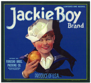 Jackie Boy Brand Vintage Sebastopol Sonoma County Apple Crate Label