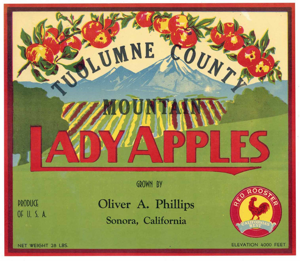 Lady Apples Brand Vintage Sonora California Apple Crate Label