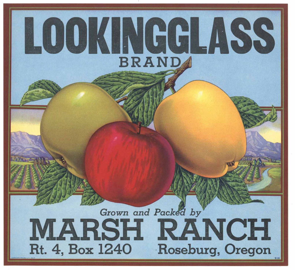 Looking Glass Brand Vintage Roseburg Oregon Apple Crate Label