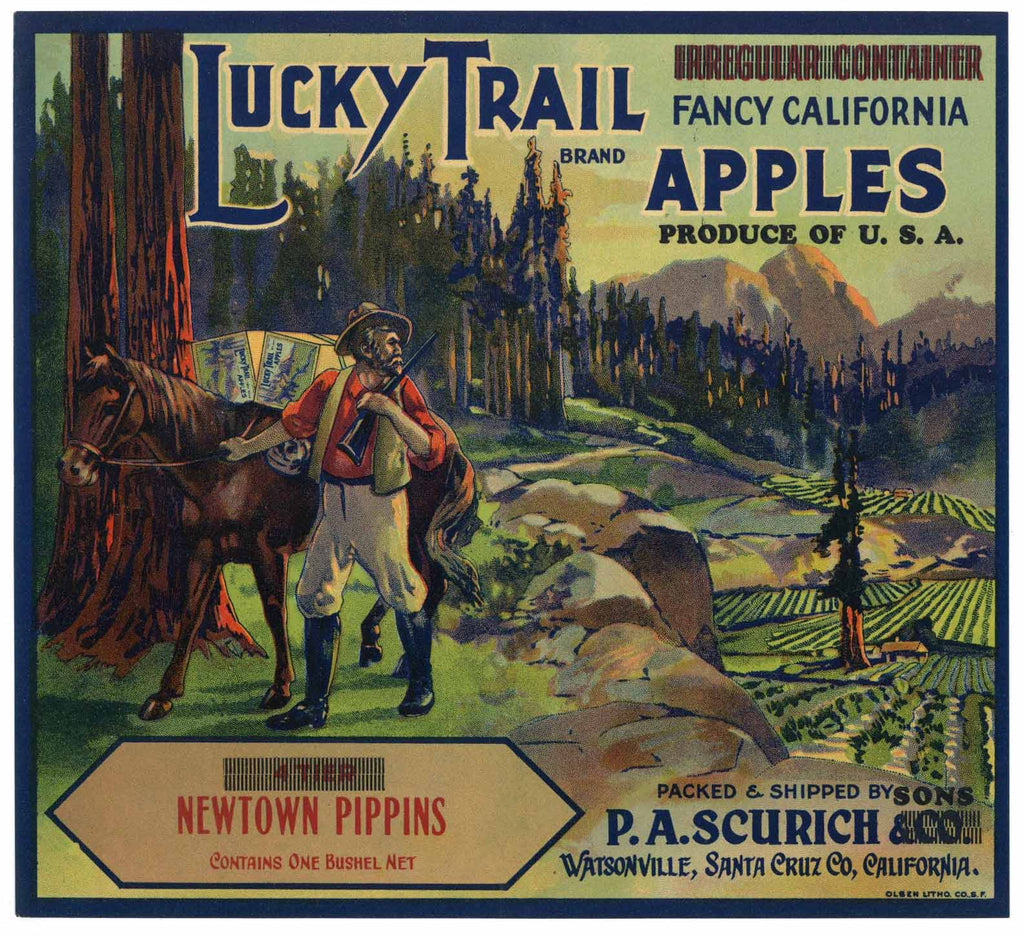 Lucky Trail Brand Vintage Watsonville Apple Crate Label, Newtown Pippins