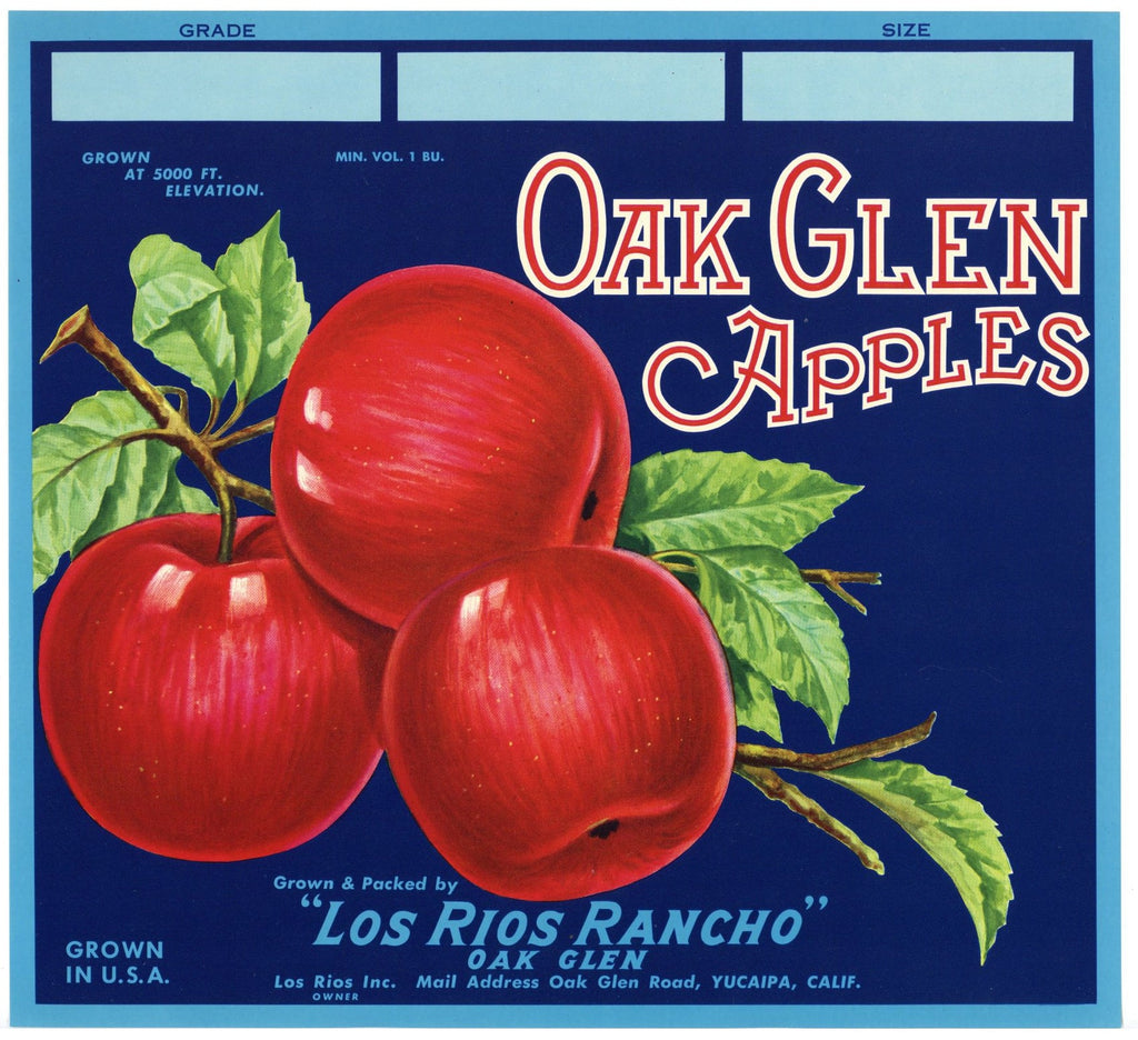 Oak Glen Brand Vintage Yucaipa California Apple Crate Label b